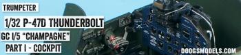 Trump_P-47_C9-ILog_Pt1
